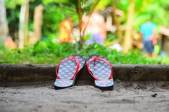 Flip flops. In nature stock photography