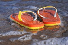 Flip-flops. Royalty Free Stock Photography
