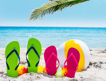 Flip flops and palm tree by the sea Stock Image