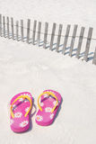 Flip flops on sand dune Royalty Free Stock Images