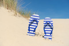 Flip flops in sand. Purple and white striped flip flops in the dunes at the coast royalty free stock images