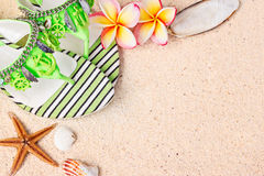 Flip Flops in the sand with shells and frangipani flowers. Summe Royalty Free Stock Photography