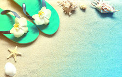 Flip Flops in the sand with shells . Summertime. beach concept. Royalty Free Stock Image