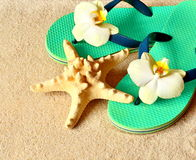 Flip Flops in the sand with starfish . Summertime. beach concept. Royalty Free Stock Photos