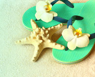 Flip Flops in the sand with starfish . Summertime .beach concept. Stock Photography