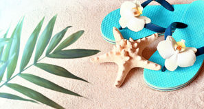 Flip Flops in the sand with starfish . Summertime .beach concept. Stock Images