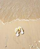 Flip flops on a sandy ocean beach. Stock Photography