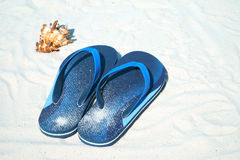 Flip flops and seashell Royalty Free Stock Image