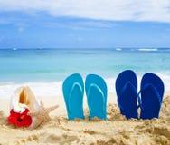 Flip flops, seashell and starfish with tropical flowers on sandy. Beach in Hawaii, Kauai Stock Image
