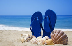 Flip-flops with seashells on beach. Flip-flops with seashells on sandy beach Stock Image