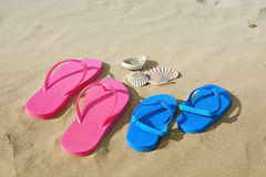 Flip flops and shells Royalty Free Stock Image