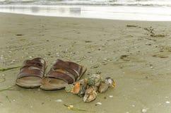 Flip-flops. And shells on the beach Stock Photos