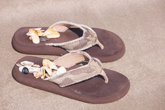 Flip Flops And Shells Stock Photo