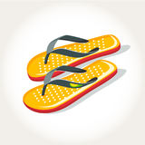 Flip flops shoes. Footwear sandals Royalty Free Stock Photos