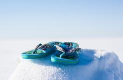 Flip Flops Snow Stock Photography