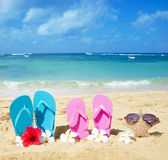 Flip flops and starfish with sunglasses on sandy beach. Flip flops and starfish with sunglasses with tropical flowers on sandy beach in Hawaii, Kauai royalty free stock images
