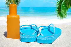 Flip flops and suntan lotion. Blue Flip flops a bootle suntan lotion under palm frond on the sunny beach Royalty Free Stock Images