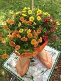 Flip Flops und Blumen lizenzfreie stockbilder