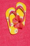 flipen plumsar hibiskus Royaltyfri Bild