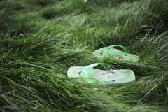 Flipflops in the grass Stock Photos