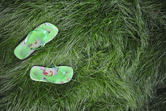 Flipflops in the grass. A pair of flipflops resting in long grass stock photography
