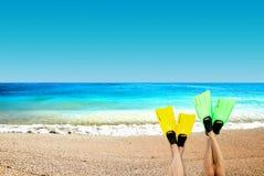 Flipper auf einem Hintergrund ein Ozean Lizenzfreie Stockbilder