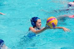 Flipper Ball player. Young girls playing flipper ball another version of water polo in a light blue swimming pool royalty free stock photo