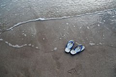 Flipper on the beach Royalty Free Stock Photos
