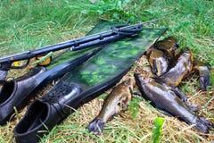 Flipper, fisk, maskering och speargun på gräset arkivfoton