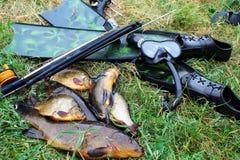 Flipper, fisk, maskering och speargun på gräset royaltyfri fotografi