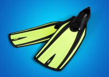 Flipper. Group of objects summer green water sport sport royalty free stock image