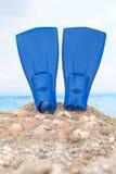 Flipper on a sandy beach. Blue flipper and seashells on a sandy beach stock photos