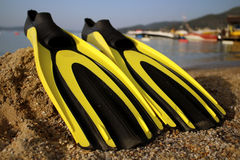 The flipper. Yellow and black colored flipper over the sands and sea stock photography