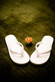 Flippers. Wedding flippers Royalty Free Stock Photo
