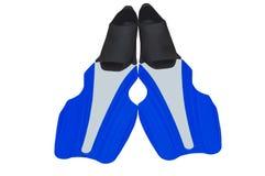 flippers Royalty-vrije Stock Fotografie
