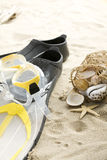 Flippers And Shells Royalty Free Stock Images