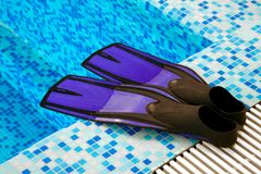 Flippers for diving Royalty Free Stock Image