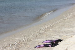 Flippers on the shore. Pink flippers child on the beach. holidays Stock Images