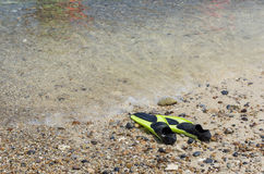 Flippers or swimming fins. Green flippers or swimming fins on the sandy beach Stock Photos