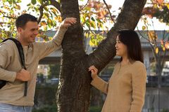 Flirt. Young man and woman talking by a tree stock images