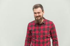 Flirt and wink. Carefree bearded man winked at camera and smiling. Studio shot, gray background Royalty Free Stock Photo