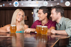 Flirting at the bar. Two cheerful young men and beautiful young Stock Photography