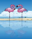 Flirtować flamingi ilustracji