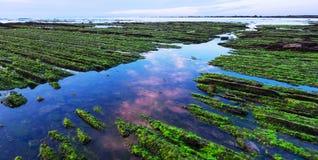 Flisz Baskijski wybrzeże przy zmierzchem, Zumaia Fotografia Royalty Free