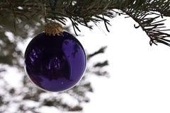 Flitter auf Weihnachtsbaum Lizenzfreie Stockbilder