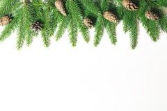 Flitter in einem blauen Glas Weihnachtsbaumast, Kiefernkegel, Tannenzweige auf weißem Hintergrund stockfoto