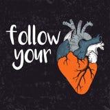 följ din hjärta Fotografering för Bildbyråer
