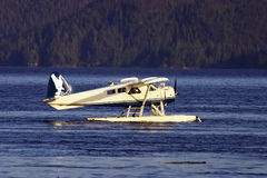 Float-plane. Beaver Floatplane on the water Stock Images
