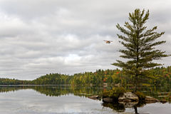 A float plane at Algonquin, Canada Stock Photography