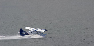 Float Plane Taking Off. A blue and white float plane takes off from a body of water. spray from the pontoon is seen as it cuts through trying to get up to speed Royalty Free Stock Photos